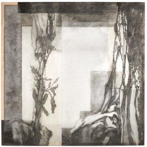 Hoorns as, 2005, houtskoolpigment op transparant doek, 135 x 135
