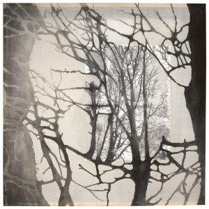zonder vuur geen as, 2006, houtskoolpigment en thinnerdruk op transparant doek, 135 x 135