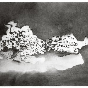 grenstekening, 2016, houtskool beuk op papier op karton, 65 x 50
