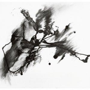 zonder titel, 2016, houtskool gouden regen en els op papier op karton, 65 x 49,5