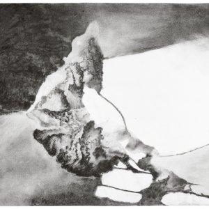zonder titel, 2018, houtskool iep en vijg op papier op karton, 65 x 49,5