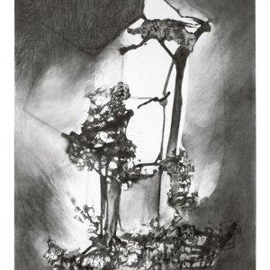 zonder titel, 2018, houtskool citroen op museumkarton, 70 x 100