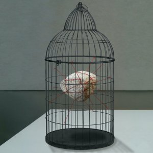 The caged stone, 2020, installation