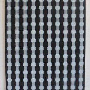 Inside outside no.1, 2020, 60 x 45 cm, acrylic on canvas.