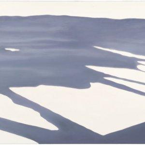Schaduw, olieverf op doek, olieverf op doek, 100 x 175