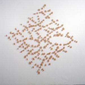 Palimpsest 5, 2007, paardenhaar, textiel, gestikt, 250 x 250 cm cm
