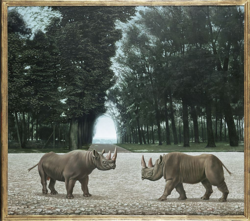 De Rhinocerossen 1956, 72 x 81cm part.coll.