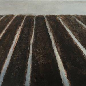 Polderland, 2017, olie op linnen, 30x60 cm
