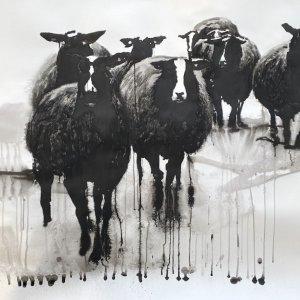 Zwartbles flock, 2019, inkt op papier, 100x200cm
