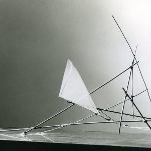 vanhasseltvera-spinselmot-1958